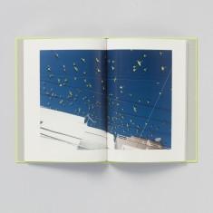 Tokyo Parrots B [Signed] by Yoshinori Mizutani – amana inc. – IMA ONLINE STORE