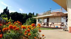8 Recommended Guesthouses in Okinawa