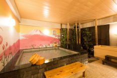 Don't Miss This! The Much-Talked-About Ladies-Only Capsule Hotel Nadeshiko Hotel Shibuya